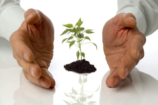 How to Help Your New Business Grow When Other Businesses Are Dying